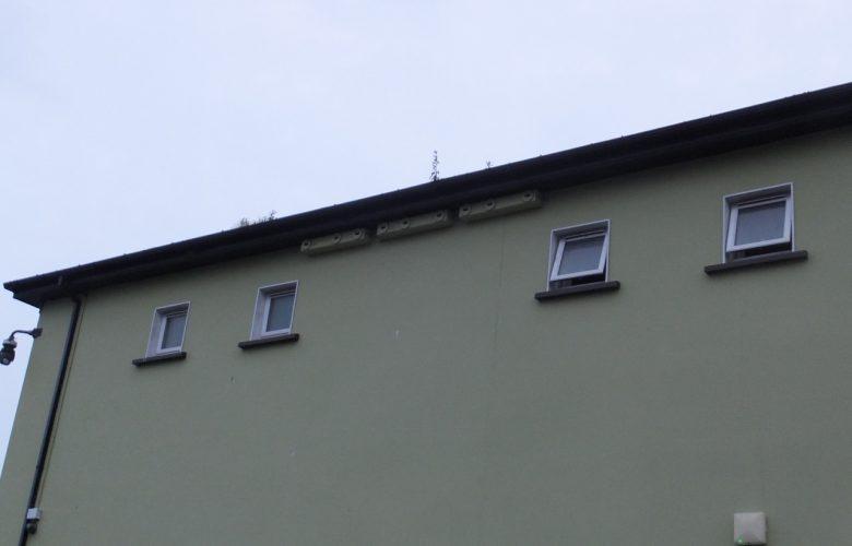 Nest boxes at Killorglin Community Centre